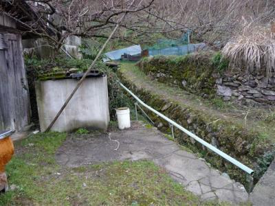 2009-02-01-011.jpg