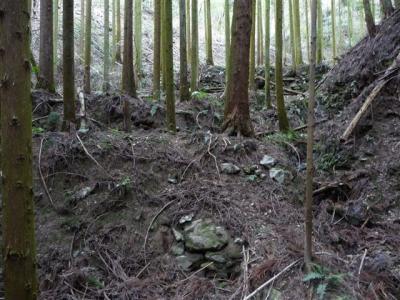 2009-02-01-049.jpg