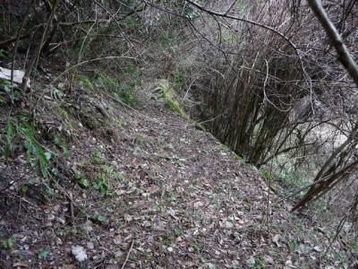 2009-02-01-053.jpg