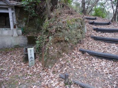 2009-02-01-080.jpg