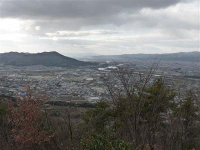 2009-02-01-083.jpg