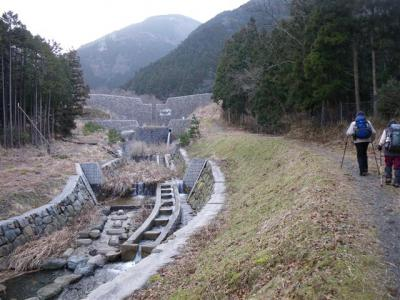 2009-02-08-003.jpg