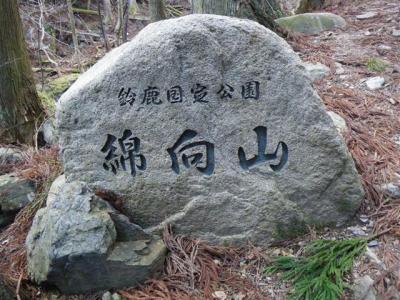 2009-02-08-004.jpg