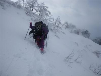 2009-02-11-107.jpg