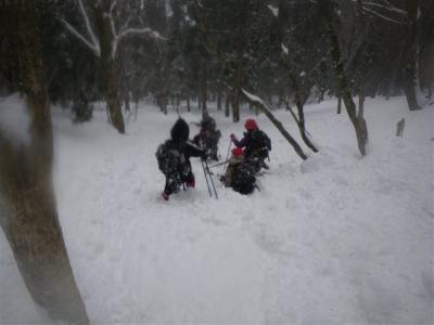 2009-02-11-134.jpg