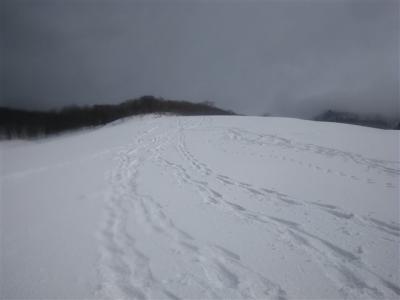 2009-02-11-142.jpg