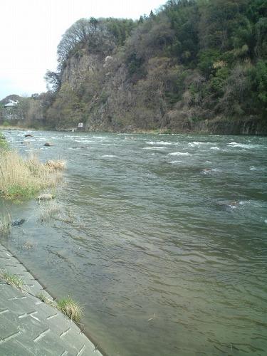 利根川本流の増水