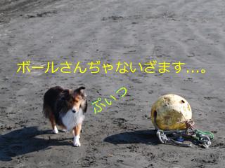 ボールぢゃないざます。