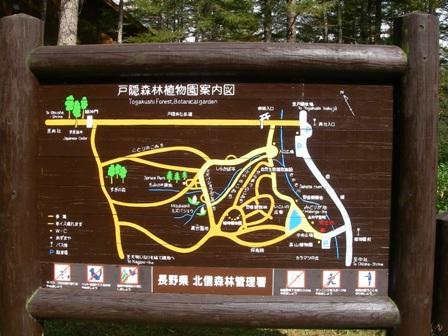 森林植物園1