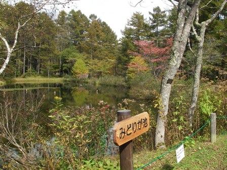 森林植物園2