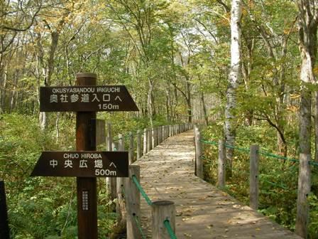 森林植物園6