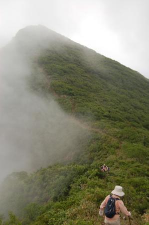 大倉山への稜線1