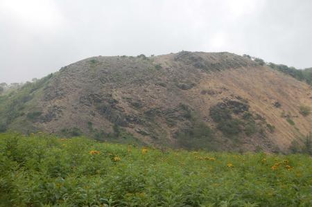 ハンゴンソウのお花畑から見る前白根山