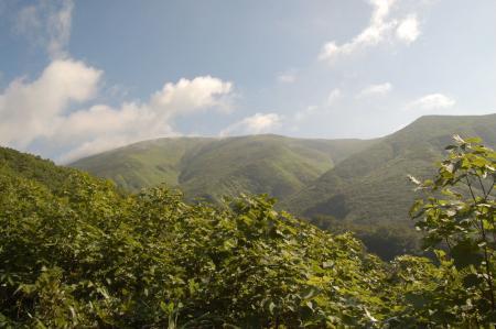 登山道から見る月山