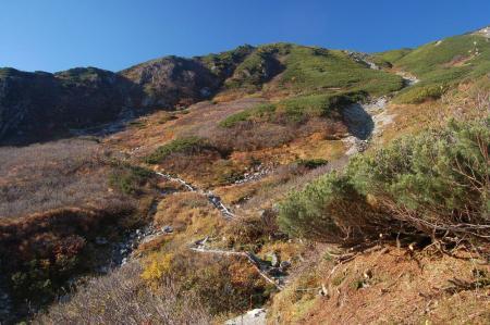極楽平への登山道