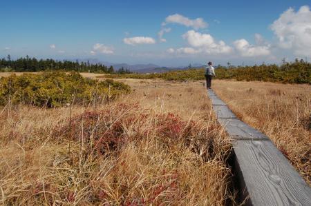 田代山湿原5
