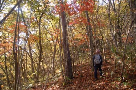 前山への登山道