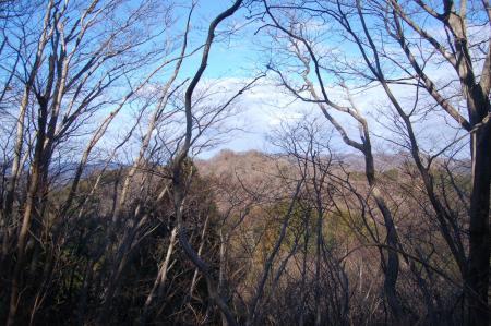 20林道から見るおかめ山