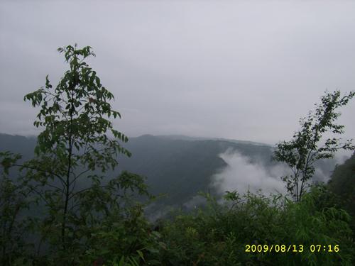 SSA50591.jpg