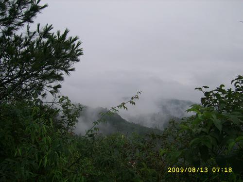 SSA50594.jpg