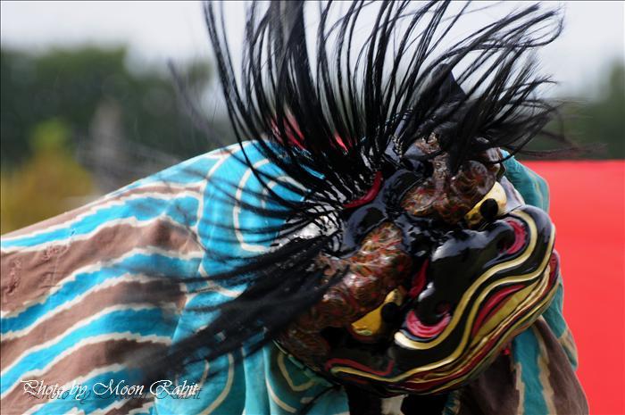 西条獅子舞フェスティバル2010(第5回)の予定 東予運動公園特設会場 2010年11月7日(日)12時~16時 --写真は-- (西条市のイベント)  黒瀬獅子舞保存会 第3回西条獅子舞フェスティバル その2 西条市西ひうち 西条運動公園レクリエーション広場 2008年11月2日