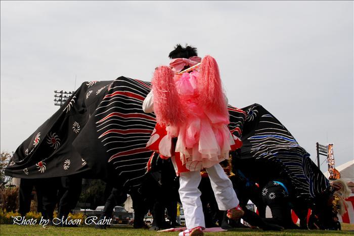西条獅子舞フェスティバル2010(第5回)の予定 東予運動公園特設会場 2010年11月7日(日)12時~16時 --写真は-- (西条市のイベント)  安用獅子保存会(1) 第3回西条獅子舞フェスティバル その3 西条市西ひうち 西条運動公園レクリエーション広場 2008年11月2日