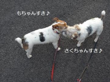 らぶらぶですね(*^_^*)