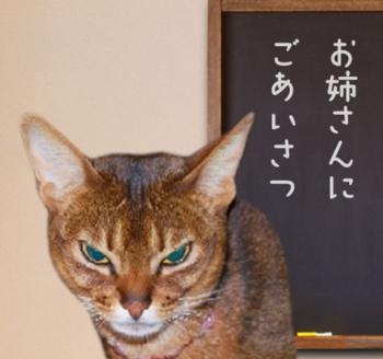 いいともtakaさん10