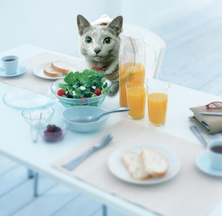 朝食あかね