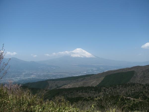 Fuji1_convert_20100507034054.jpg