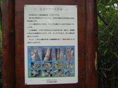kasatoriyama100808-107