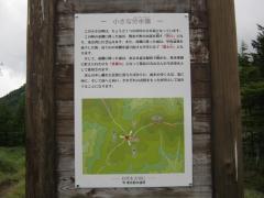 kasatoriyama100808-109