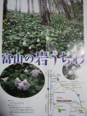 iwautiwa110410-103