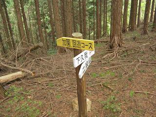 hutamatayama110503-237