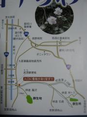 iwautiwa110410-104