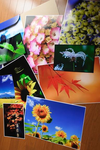 http://blogimg.goo.ne.jp/user_image/69/40/1eb6b2be6d4927ef24245e367ef971b8.jpg
