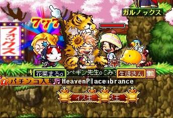 Maple100726_021315-crop.jpg