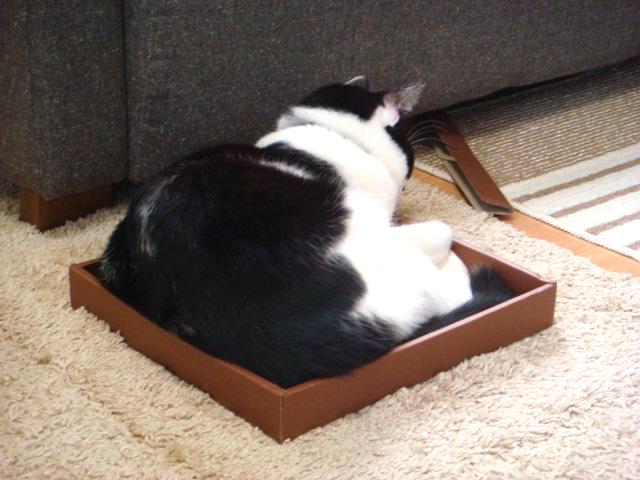 せんべい箱べえ2