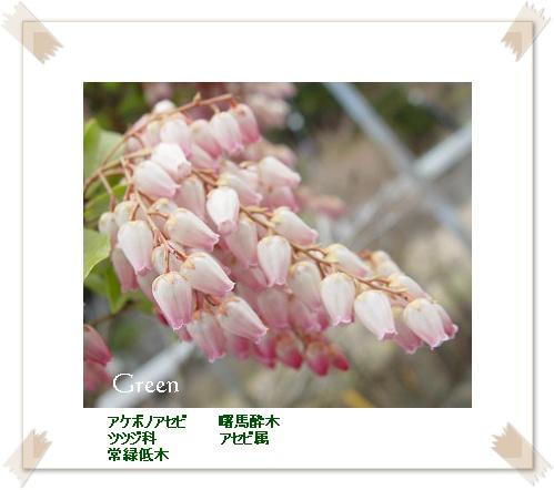 350asebi20110409c.jpg