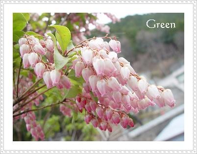 350asebi20110409z.jpg