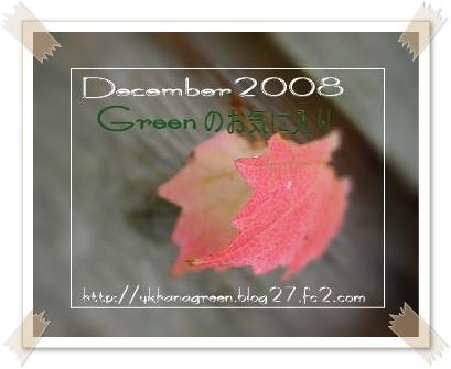 kouyou200812g1e.jpg