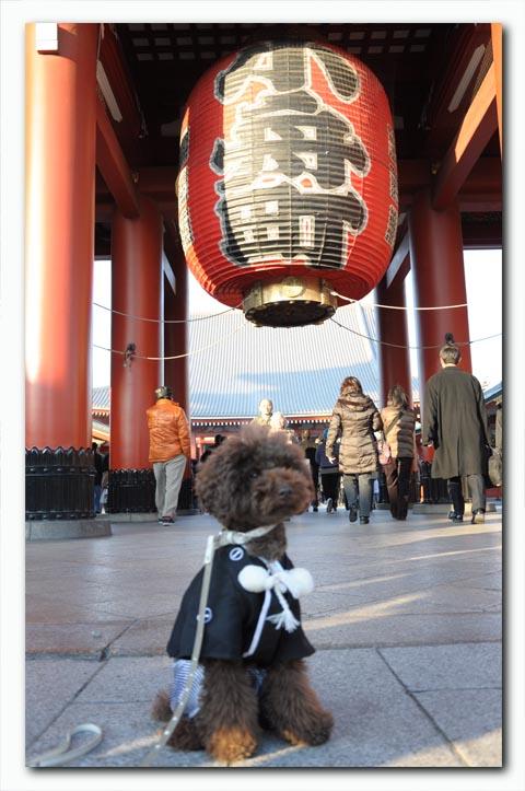 hatsumoude2011002.jpg