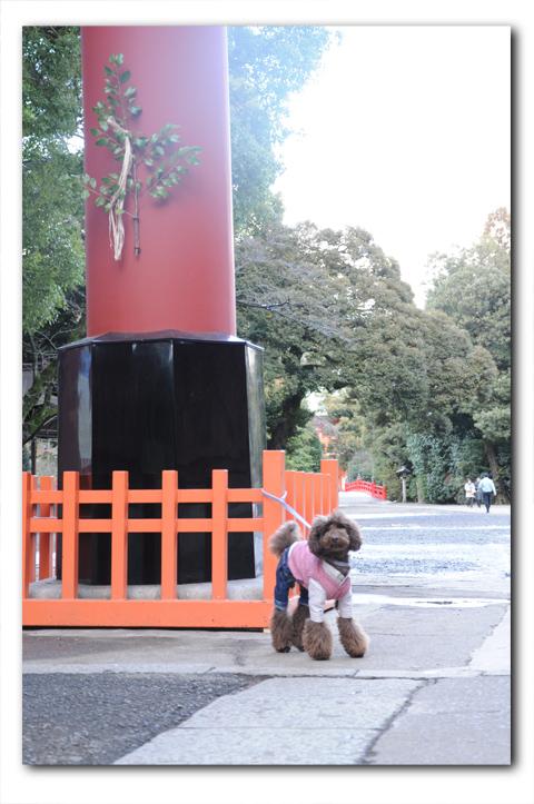 hatsumoude20120125001.jpg