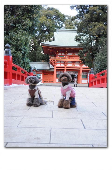 hatsumoude20120125002.jpg