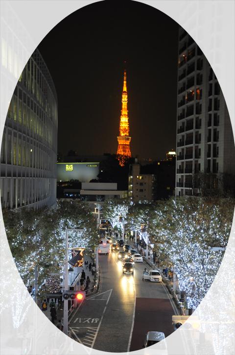 irumi2010003.jpg