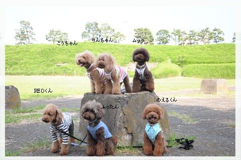 odaiba20110604001.jpg