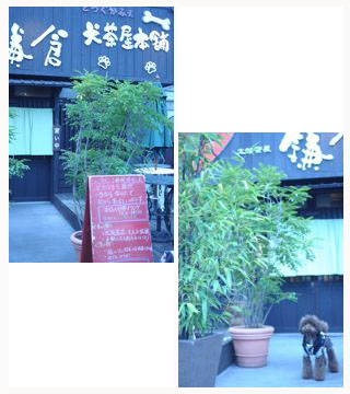 ueno091209009.jpg