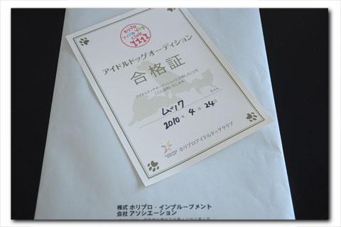 yoyogi100424009.jpg