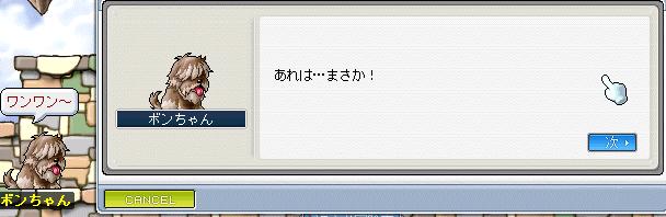 20100725デュアル (11)