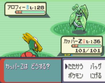 9101010新ポケ達 (8)